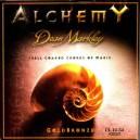 Struny Dean Markley Ak.12-54 Alchemy Gold Br. 2023